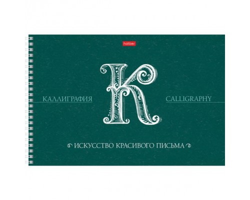 Тетрадь 48 листов на спирали Прописей для Каллиграфии и Леттеринга Искусство красивого письма