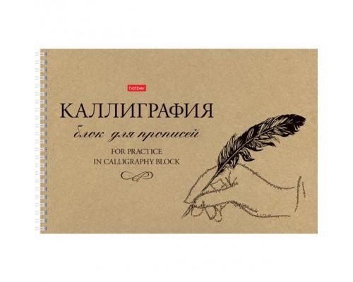 Тетрадь 48 листов на спирали Прописей для Каллиграфии и Леттеринга Пиши красиво