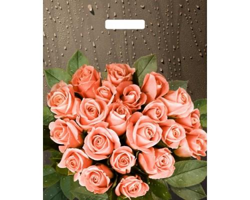 Пакет вырубной 48*38см.Розы после дождя